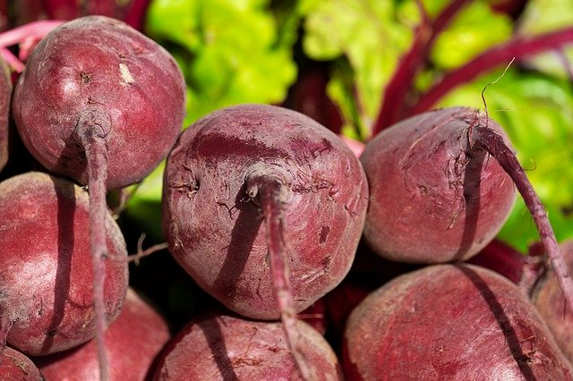 beets, easiest vegetables for beginner gardeners to grow