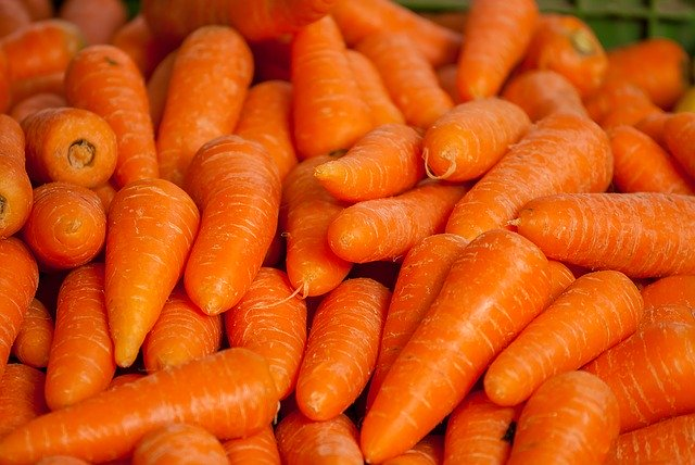 carrots, easiest vegetables for beginner gardeners to grow