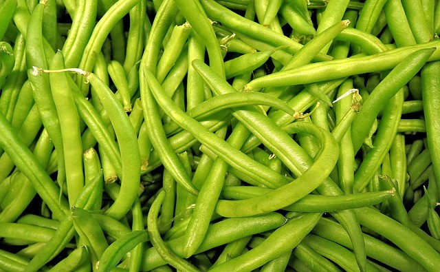 green beans, easiest vegetables for beginner gardeners to grow
