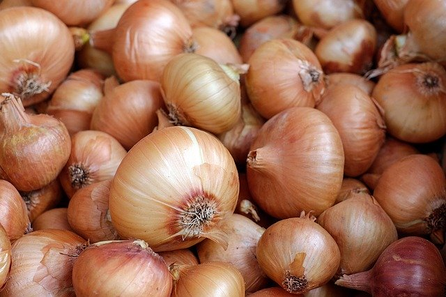 onions, easiest vegetables for beginner gardeners to grow