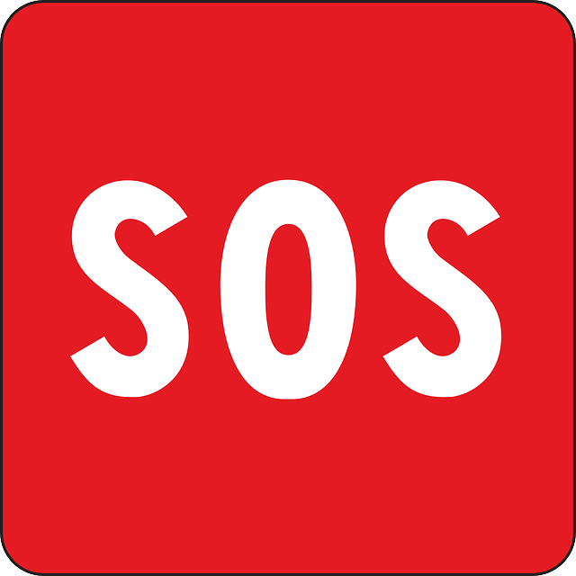Sos, S.O.S, Emergency signal, satellite communicator, solid survival tips that will keep you alive,